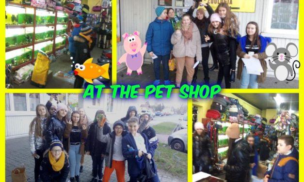 """At the pet shop, czyli lekcja angielskiego wsklepie zoologicznym """"Reksio""""."""
