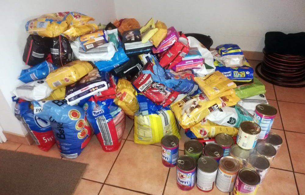 """Akcja MEiN """"Razem naŚwięta"""" – zbiórka karmy dla zwierzątze Schroniska wKatarzynowie"""